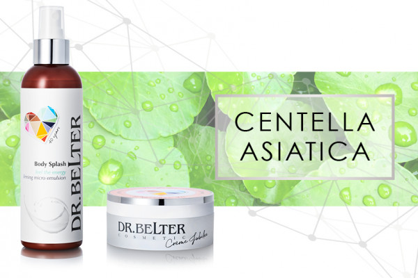 centella-asiatica_