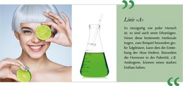LinieA-Blog